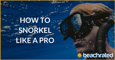 How To Snorkel Like A Pro [In No Time]