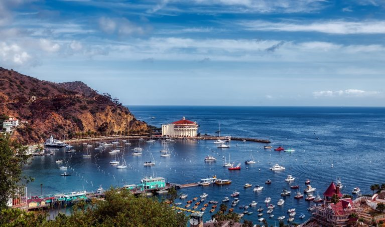 a view of catalina island bay with many boats anchored in the bay