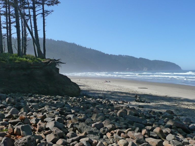 pebble beach with trees and a hillside in the background