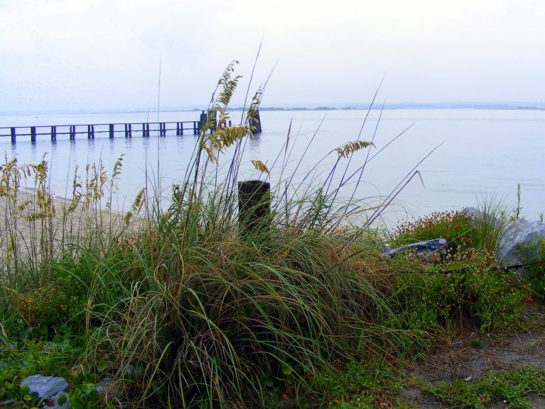 view of bald head island boardwalk from the shore behind grass